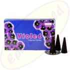 Darshan Violet indische Räucherkegel - Räucherkerzen