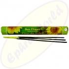 Flute Brand Sun Flower indische Räucherstäbchen