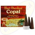 Hari Darshan Copal Räucherkegel