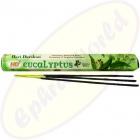 Hari Darshan Eucalyptus indische Räucherstäbchen