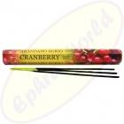 HEM Cranberry indische Räucherstäbchen