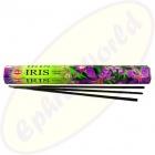 HEM Iris indische Räucherstäbchen
