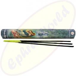 Flute Virgin Mary indische Räucherstäbchen