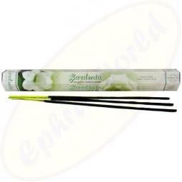 Flute Gardenia indische Räucherstäbchen