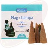 Aromatika Back Flow Nag Champa XL Räucherkegel