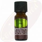 Pajoma ätherisches Öl Anis